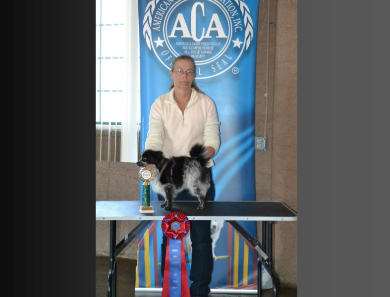 deborah, herrington, showing, pic, dog, breeder, debbie, debra, eucha, ok, oklahoma, professiona, handler, show, judge, dog-breeder, usda, inspected,